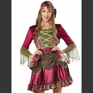 Women's Pirate Costume Dress Red and Gold Small